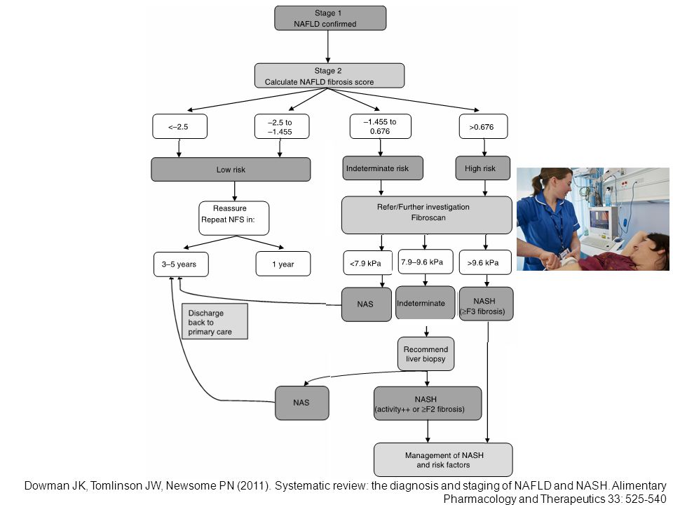 Dowman JK, Tomlinson JW, Newsome PN (2011). Systematic review: the diagnosis and staging of NAFLD and NASH. Alimentary Pharmacology and Therapeutics 3