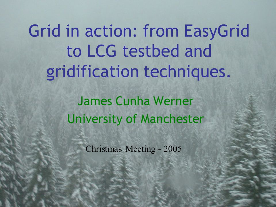 Grid in action: from EasyGrid to LCG testbed and gridification techniques. James Cunha Werner University of Manchester Christmas Meeting - 2005