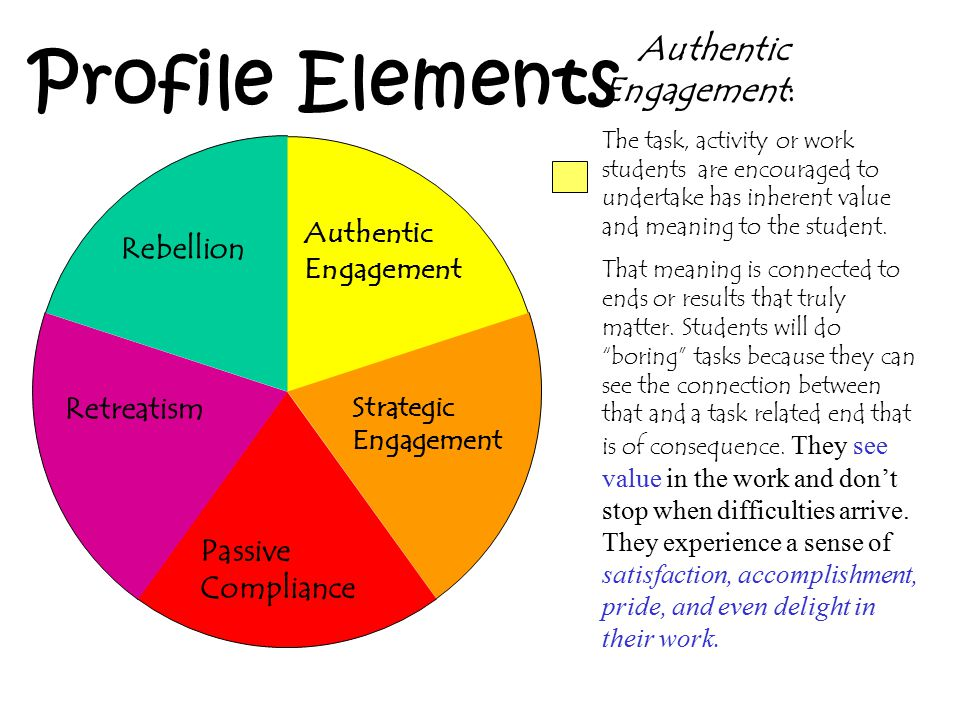 Authentic Engagement: The task, activity or work students are encouraged to undertake has inherent value and meaning to the student. That meaning is c