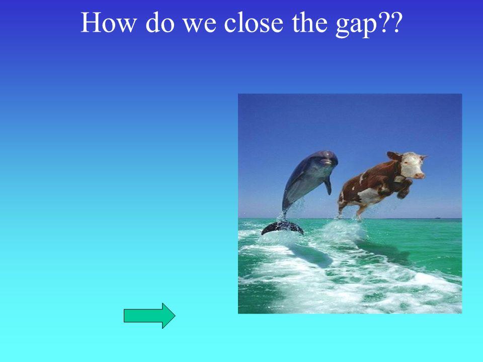 How do we close the gap