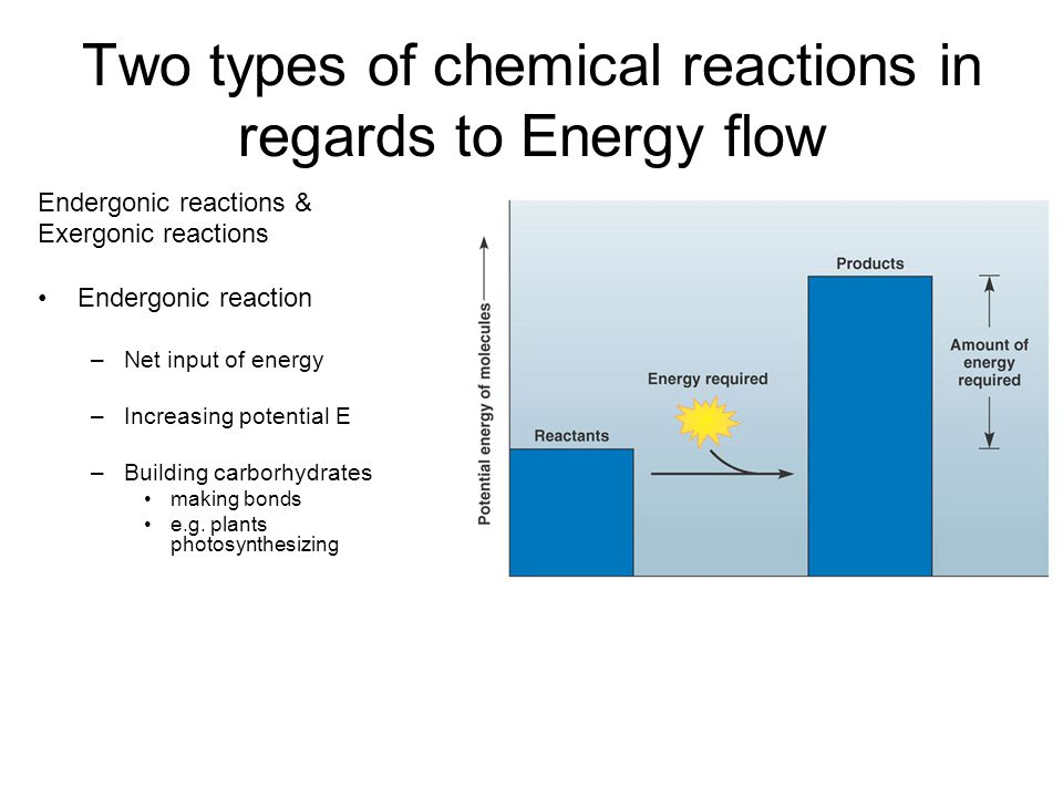 Two types of chemical reactions in regards to Energy flow Endergonic reactions & Exergonic reactions Endergonic reaction –Net input of energy –Increasing potential E –Building carborhydrates making bonds e.g.