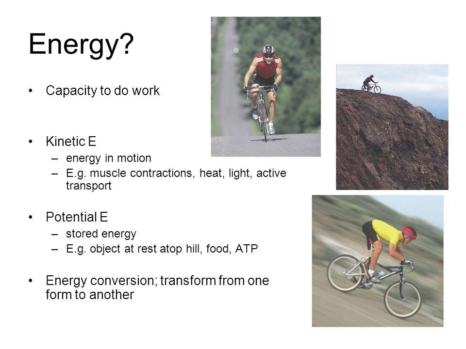 Energy. Capacity to do work Kinetic E –energy in motion –E.g.