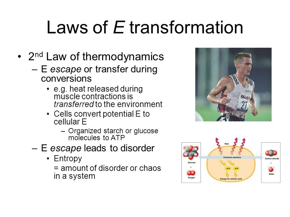 Laws of E transformation 2 nd Law of thermodynamics –E escape or transfer during conversions e.g.