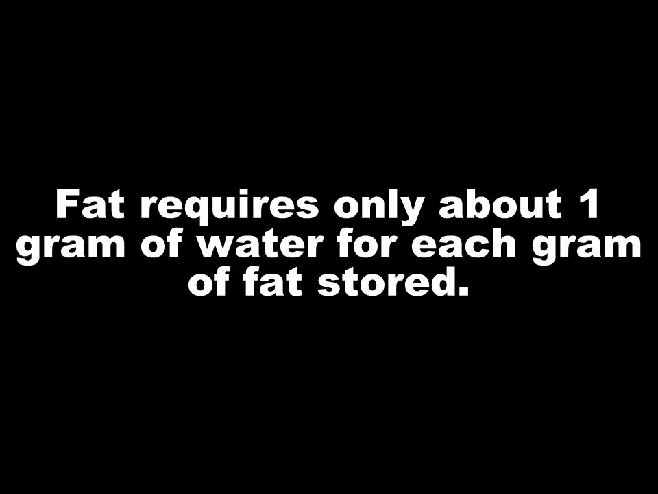 Fat requires only about 1 gram of water for each gram of fat stored.