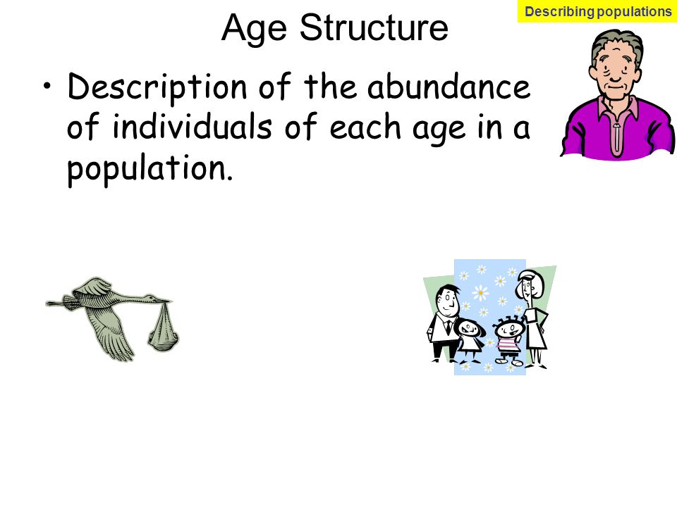 Age Structure Description of the abundance of individuals of each age in a population. Describing populations