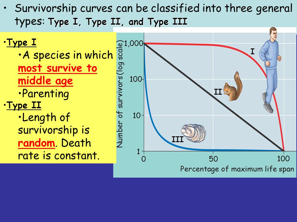 Type I, Type II, and Type IIISurvivorship curves can be classified into three general types : Type I, Type II, and Type III I II III 50 100 0 1 10 100