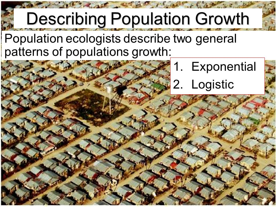 Describing Population Growth Population ecologists describe two general patterns of populations growth: 1.Exponential 2.Logistic