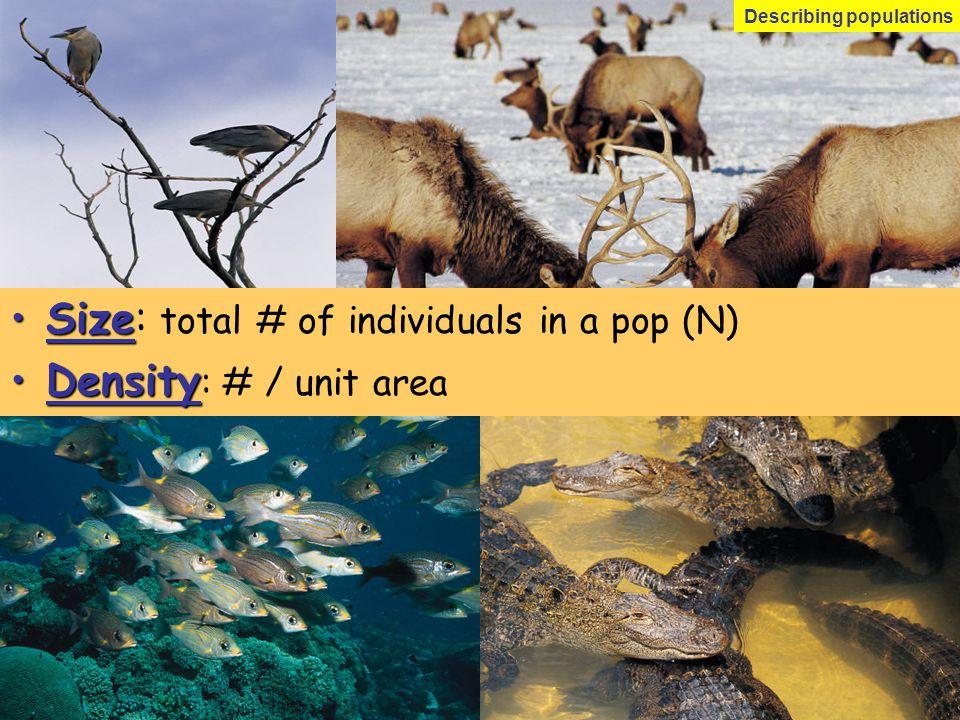 SizeSize: total # of individuals in a pop (N) DensityDensity : # / unit area Describing populations