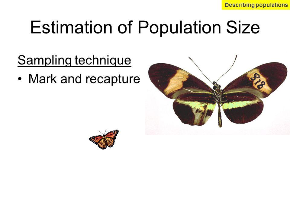 Estimation of Population Size Sampling technique Mark and recapture Describing populations
