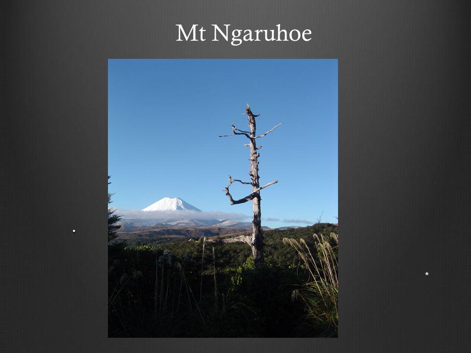 . * Mt Ngaruhoe