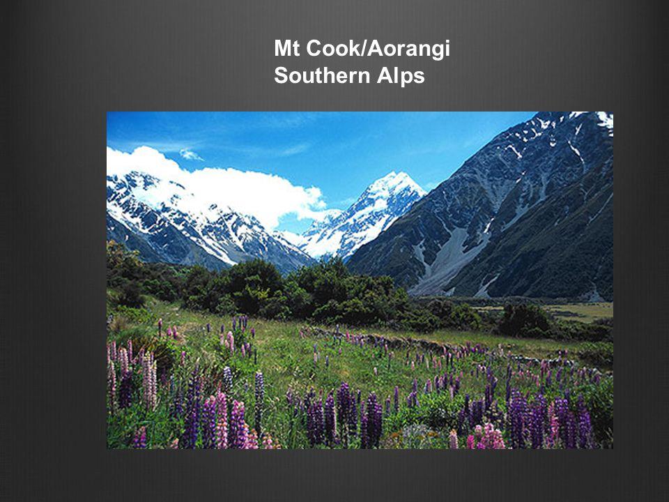 Mt Cook/Aorangi Southern Alps