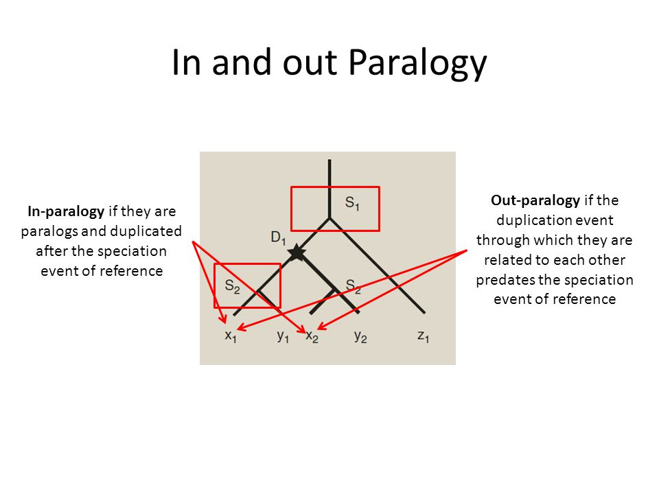 In and out Paralogy In-paralogy if they are paralogs and duplicated after the speciation event of reference Out-paralogy if the duplication event through which they are related to each other predates the speciation event of reference