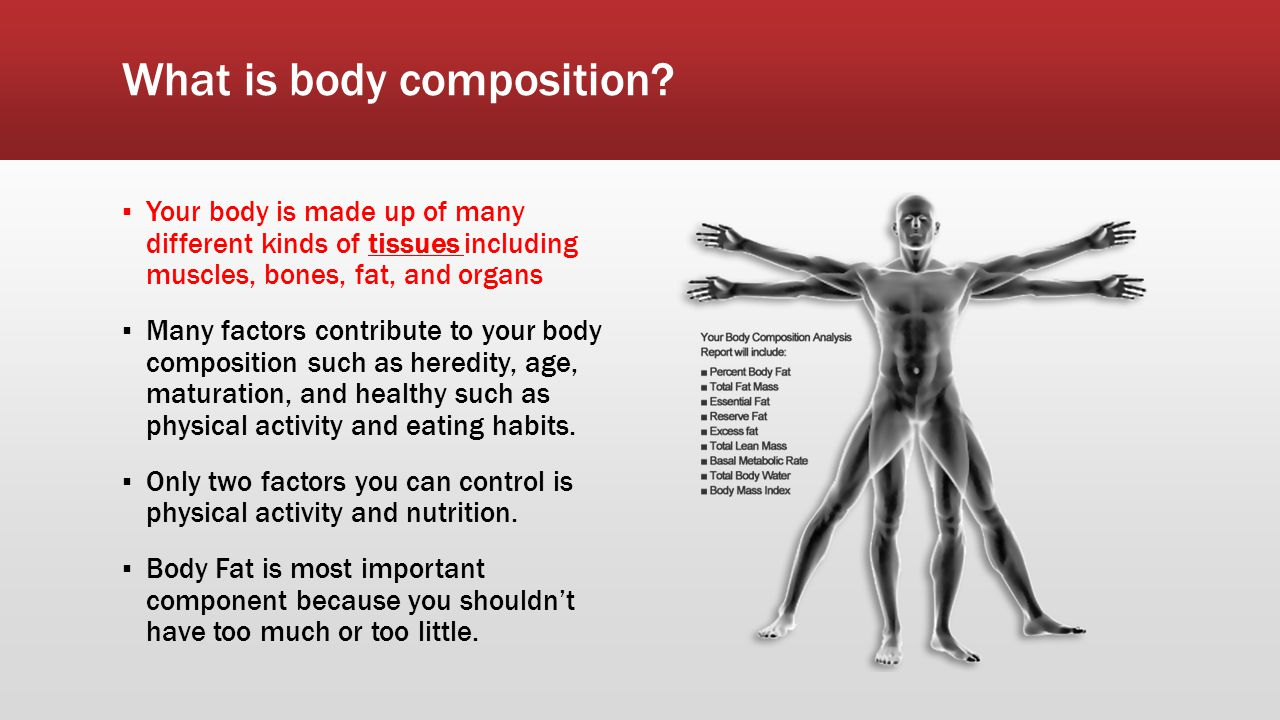 What is body composition.