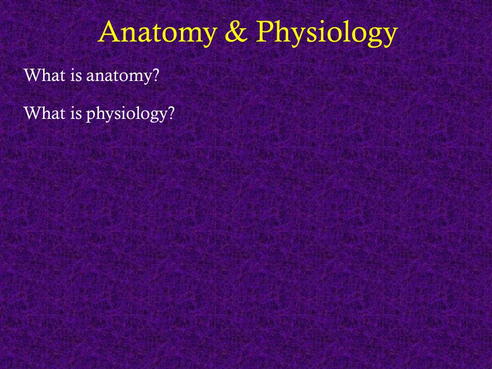 Anatomy & Physiology What is anatomy? What is physiology?