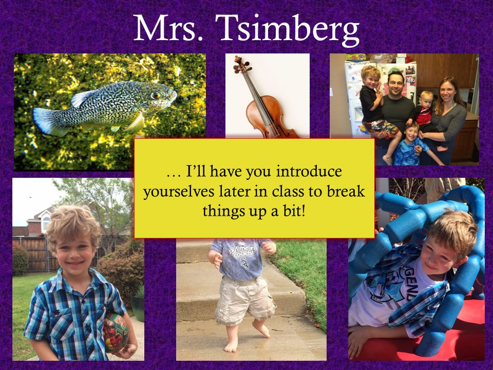 Mrs. Tsimberg … I'll have you introduce yourselves later in class to break things up a bit!