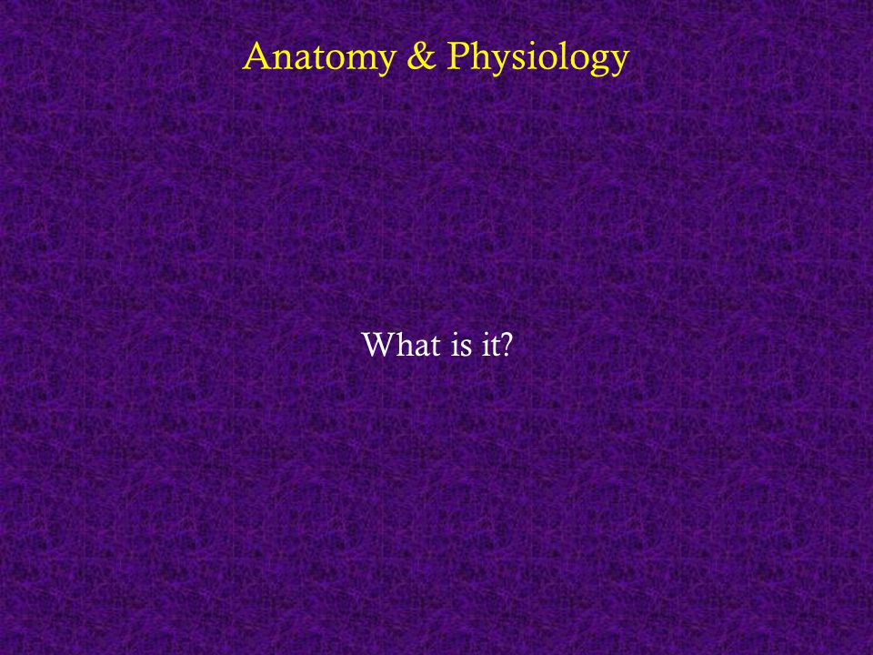 Anatomy & Physiology What is it?
