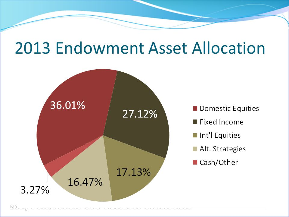 2013 Endowment Asset Allocation