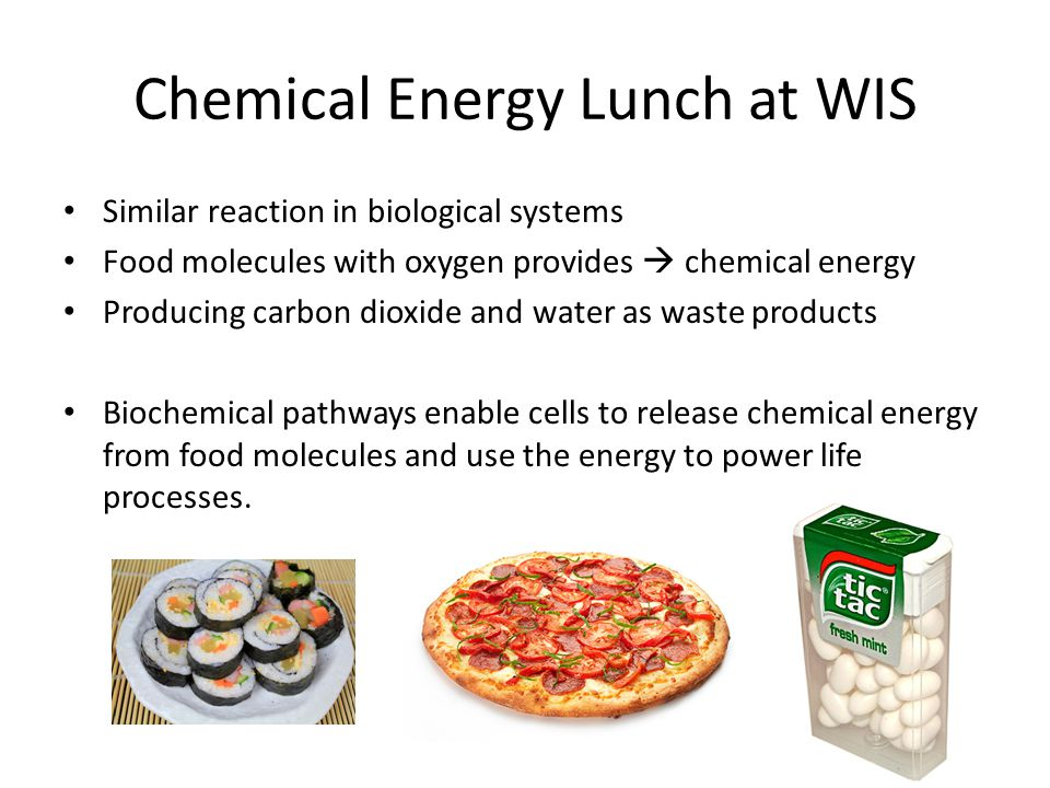 Chemical Energy Lunch at WIS Similar reaction in biological systems Food molecules with oxygen provides  chemical energy Producing carbon dioxide and water as waste products Biochemical pathways enable cells to release chemical energy from food molecules and use the energy to power life processes.
