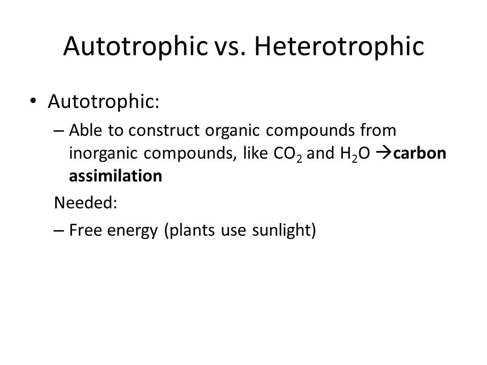 Autotrophic vs.