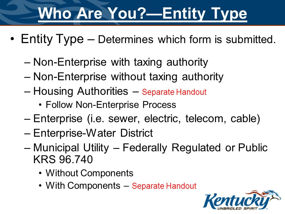 Who Are You?—Entity Type Entity Type – Determines which form is submitted. –Non-Enterprise with taxing authority –Non-Enterprise without taxing author