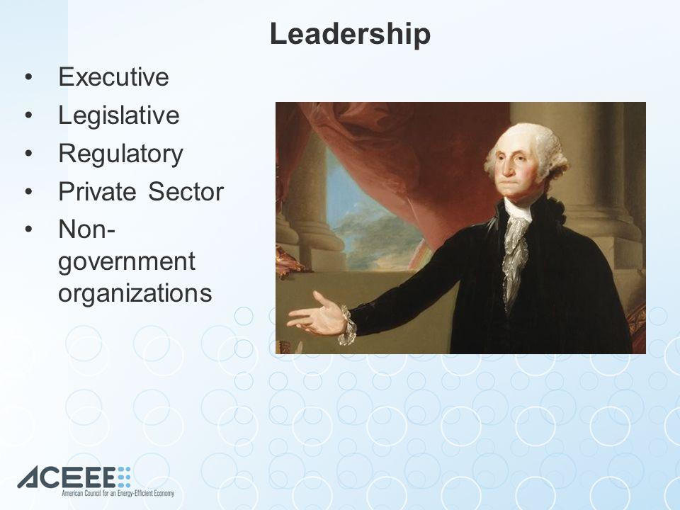 Leadership Executive Legislative Regulatory Private Sector Non- government organizations