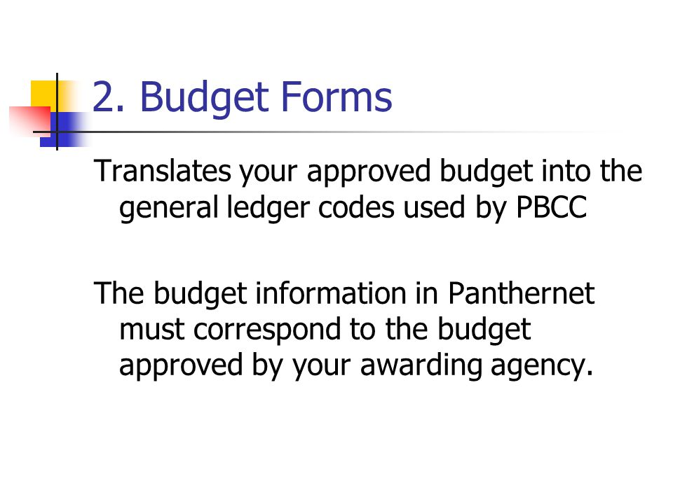 2. Budget Forms Translates your approved budget into the general ledger codes used by PBCC The budget information in Panthernet must correspond to the