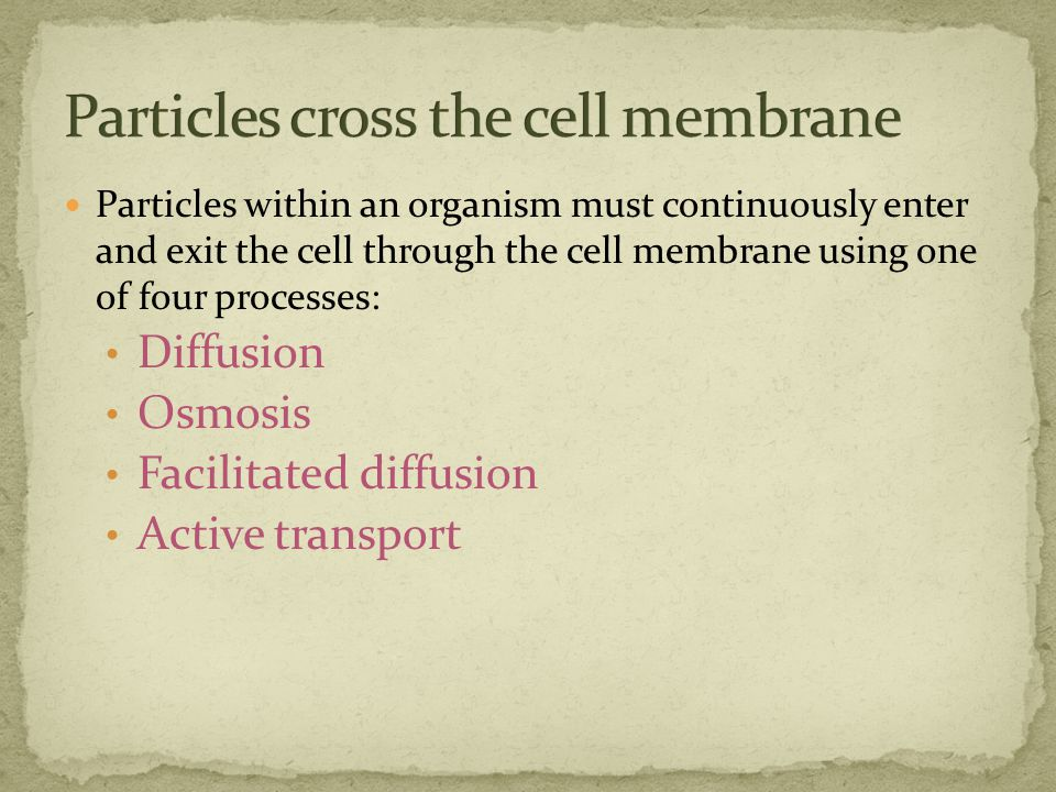 Particles within an organism must continuously enter and exit the cell through the cell membrane using one of four processes: Diffusion Osmosis Facilitated diffusion Active transport