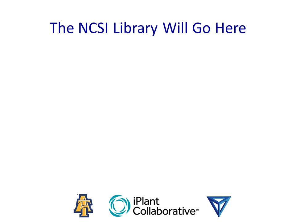 The NCSI Library Will Go Here