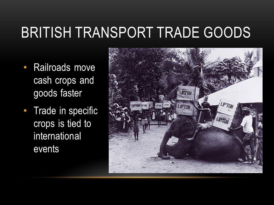 Railroads move cash crops and goods faster Trade in specific crops is tied to international events BRITISH TRANSPORT TRADE GOODS