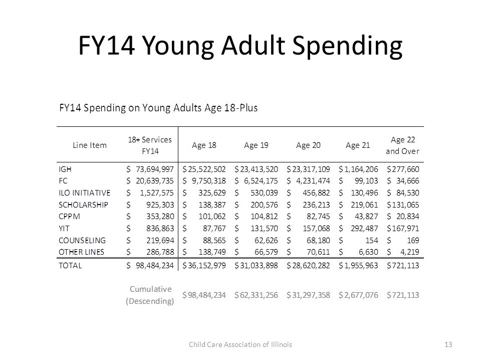 FY14 Young Adult Spending Child Care Association of Illinois13