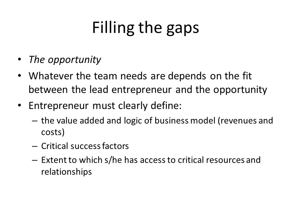 Filling the gaps The opportunity Whatever the team needs are depends on the fit between the lead entrepreneur and the opportunity Entrepreneur must clearly define: – the value added and logic of business model (revenues and costs) – Critical success factors – Extent to which s/he has access to critical resources and relationships