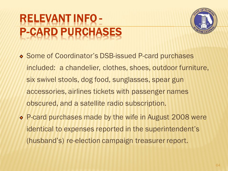 Some of Coordinator's DSB-issued P-card purchases included: a chandelier, clothes, shoes, outdoor furniture, six swivel stools, dog food, sunglasses, spear gun accessories, airlines tickets with passenger names obscured, and a satellite radio subscription.