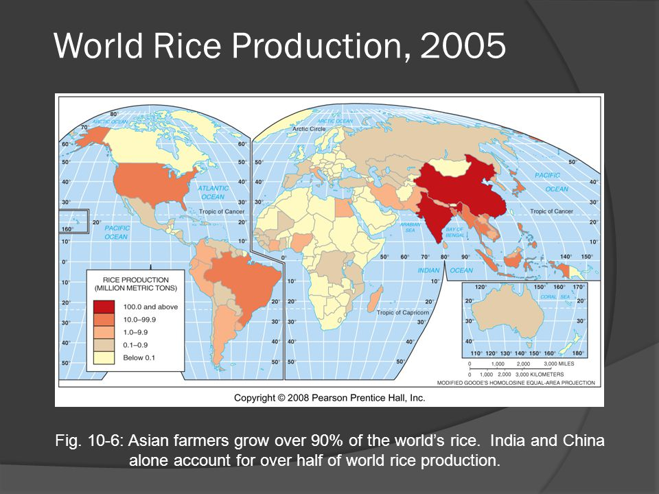 World Rice Production, 2005 Fig. 10-6: Asian farmers grow over 90% of the world's rice.