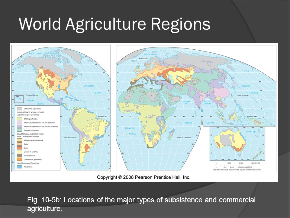 World Agriculture Regions Fig.