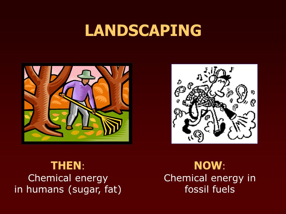 THEN : Chemical energy in humans (sugar, fat) NOW : Chemical energy in fossil fuels LANDSCAPING