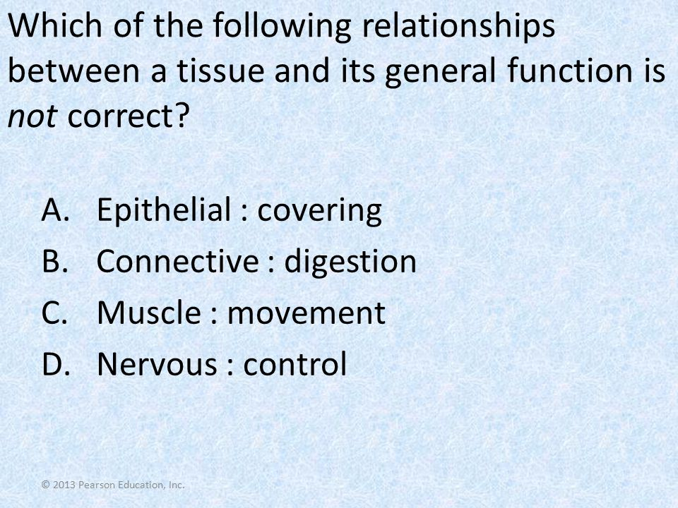 © 2013 Pearson Education, Inc. Which of the following relationships between a tissue and its general function is not correct? A.Epithelial : covering