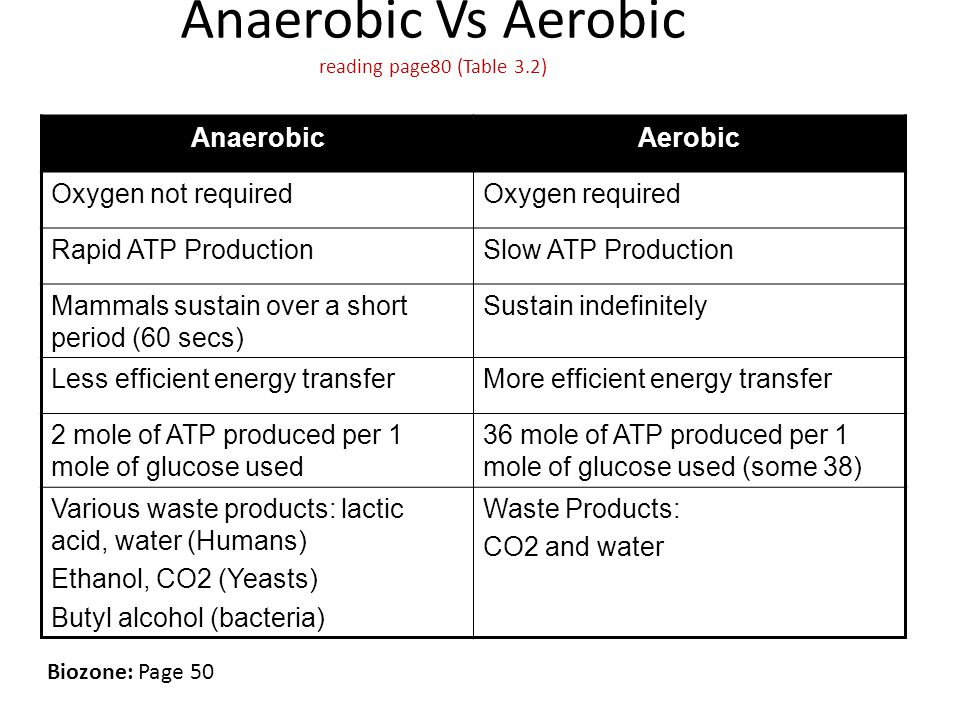 Anaerobic Vs Aerobic reading page80 (Table 3.2) AnaerobicAerobic Oxygen not requiredOxygen required Rapid ATP ProductionSlow ATP Production Mammals sustain over a short period (60 secs) Sustain indefinitely Less efficient energy transferMore efficient energy transfer 2 mole of ATP produced per 1 mole of glucose used 36 mole of ATP produced per 1 mole of glucose used (some 38) Various waste products: lactic acid, water (Humans) Ethanol, CO2 (Yeasts) Butyl alcohol (bacteria) Waste Products: CO2 and water Biozone: Page 50