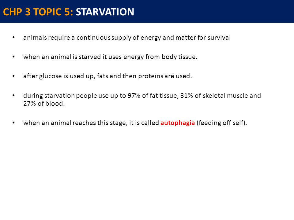 CHP 3 TOPIC 5: STARVATION animals require a continuous supply of energy and matter for survival when an animal is starved it uses energy from body tissue.