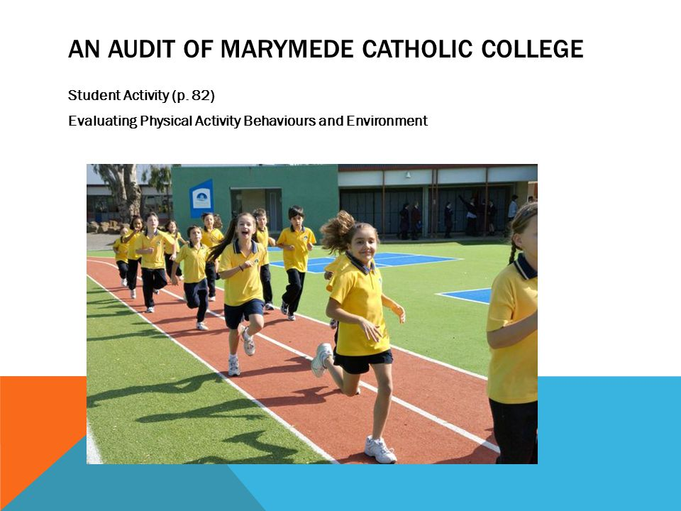 AN AUDIT OF MARYMEDE CATHOLIC COLLEGE Student Activity (p.