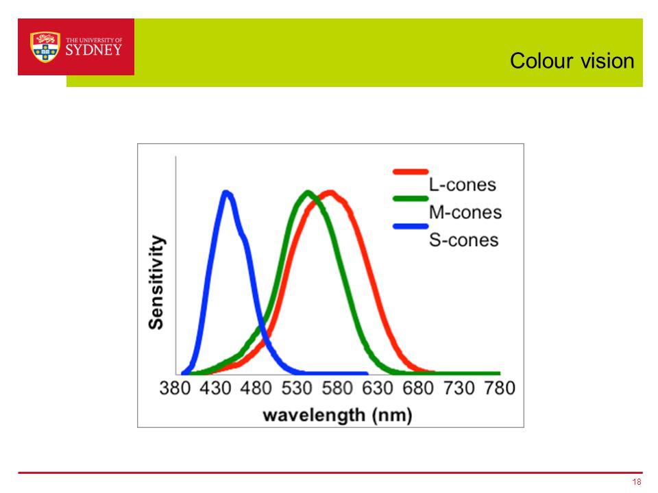 Colour vision 18