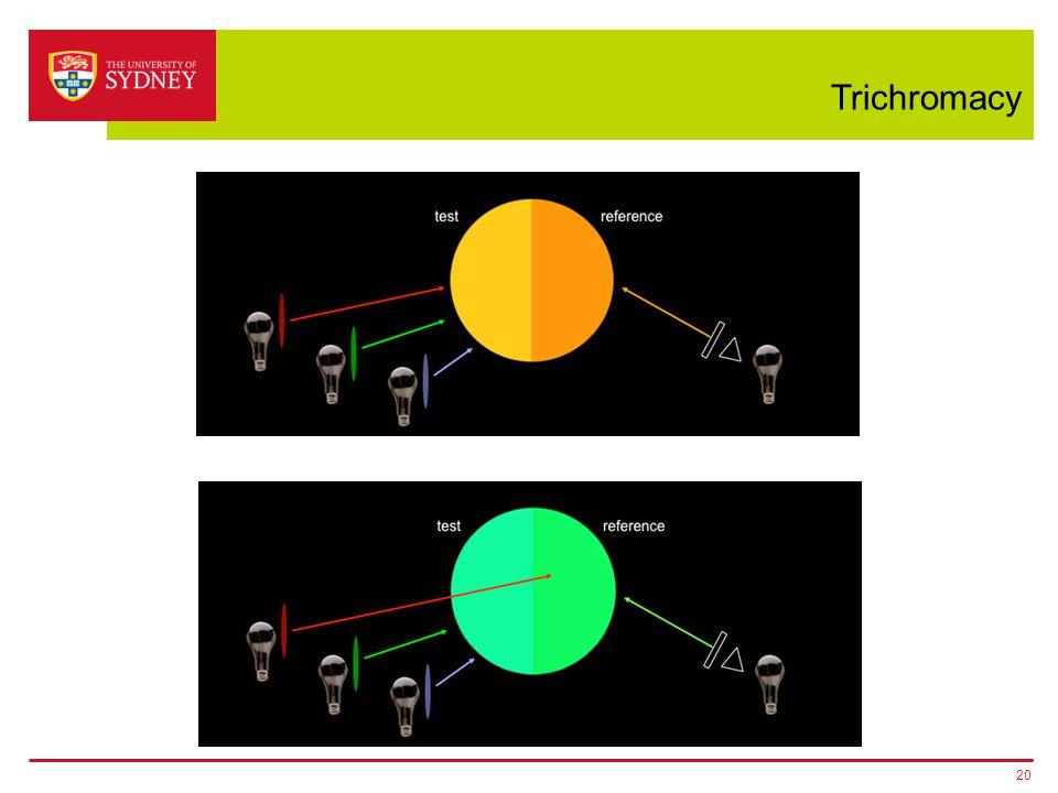 Trichromacy 20