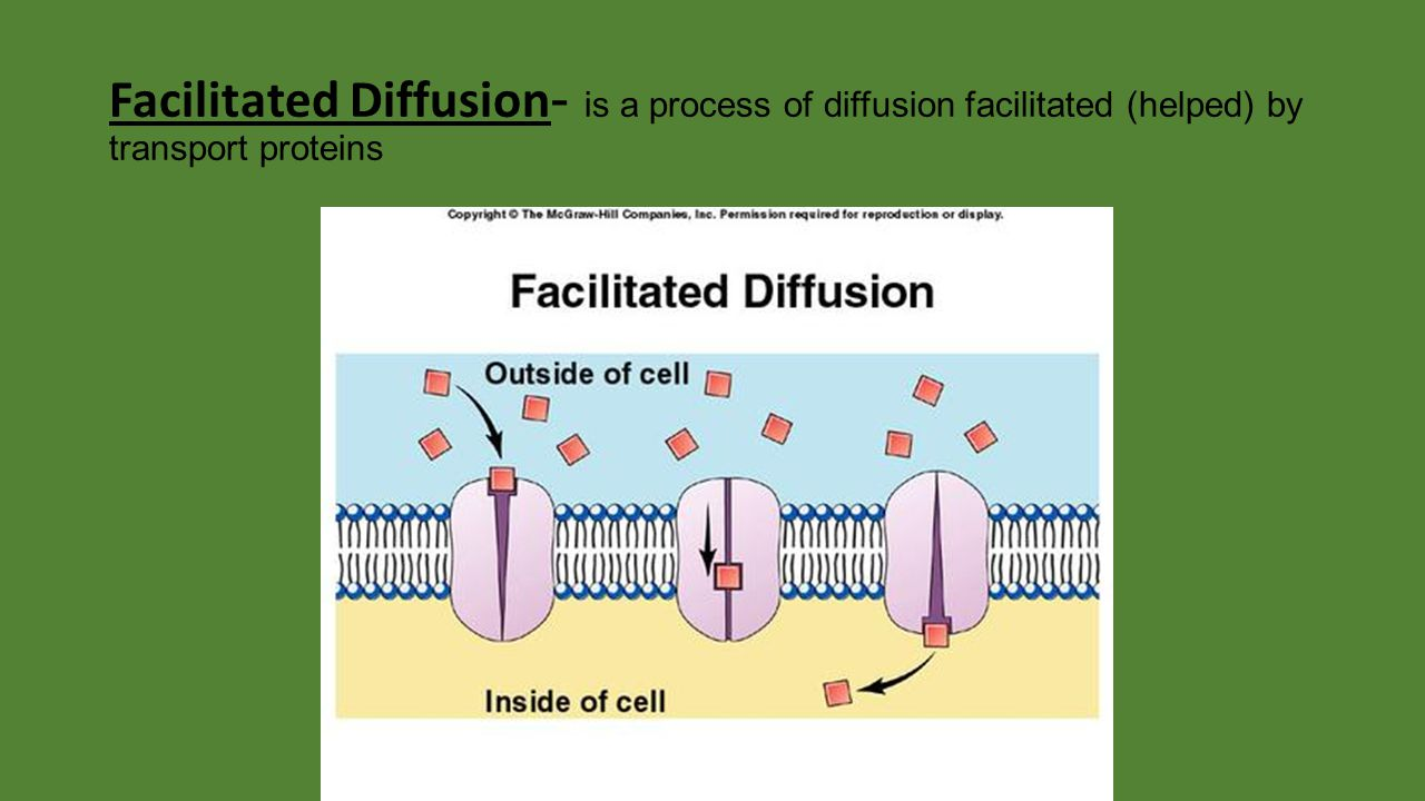 Facilitated Diffusion - is a process of diffusion facilitated (helped) by transport proteins