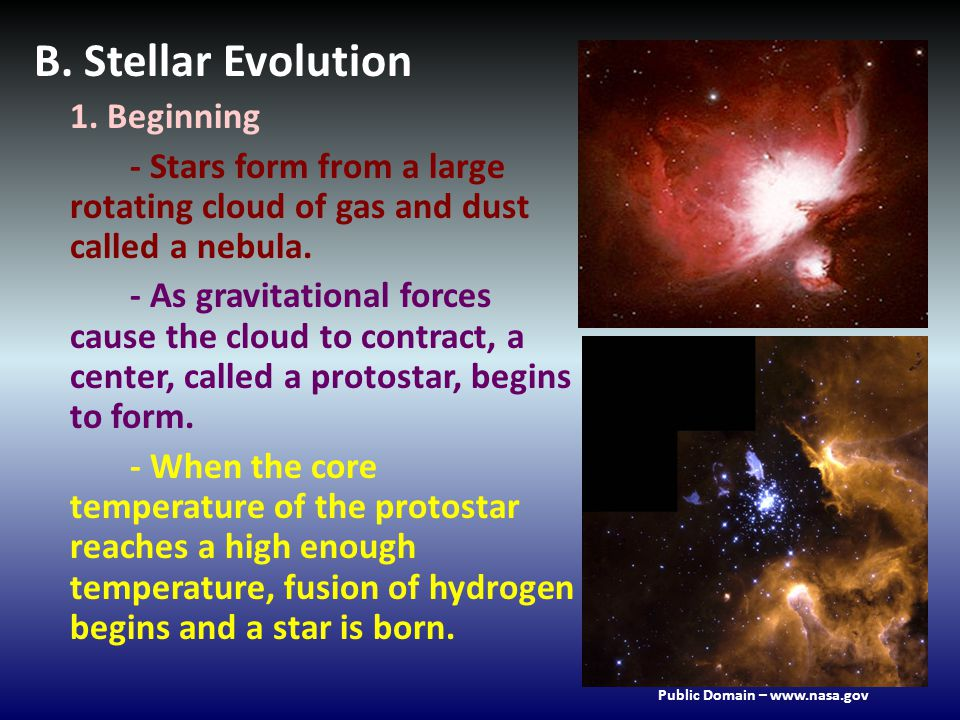 B. Stellar Evolution 1. Beginning - Stars form from a large rotating cloud of gas and dust called a nebula. - As gravitational forces cause the cloud
