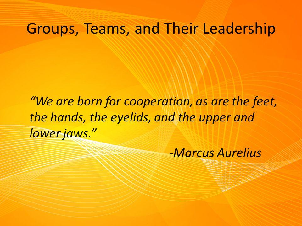 Types of Teams Cont.