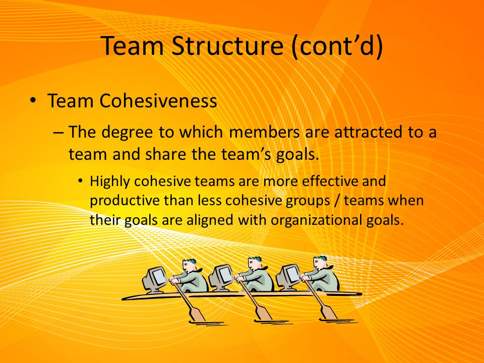Team Structure (cont'd) Team Cohesiveness – The degree to which members are attracted to a team and share the team's goals. Highly cohesive teams are