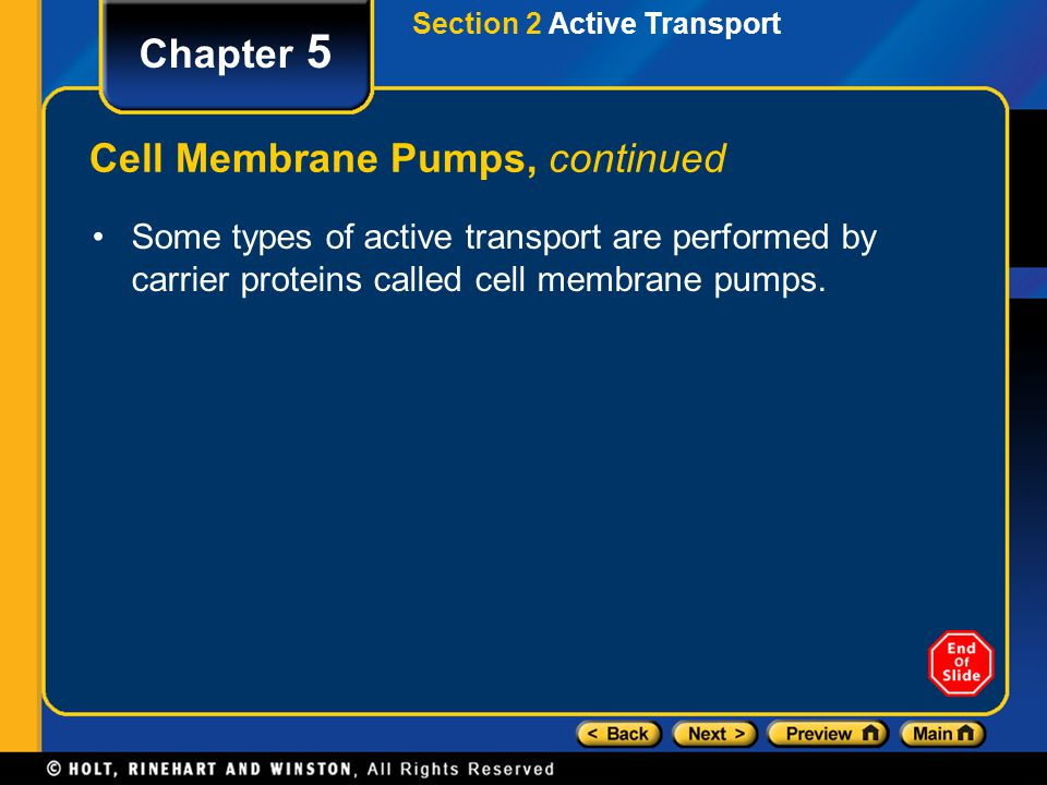 Section 2 Active Transport Chapter 5 Cell Membrane Pumps, continued Some types of active transport are performed by carrier proteins called cell membrane pumps.