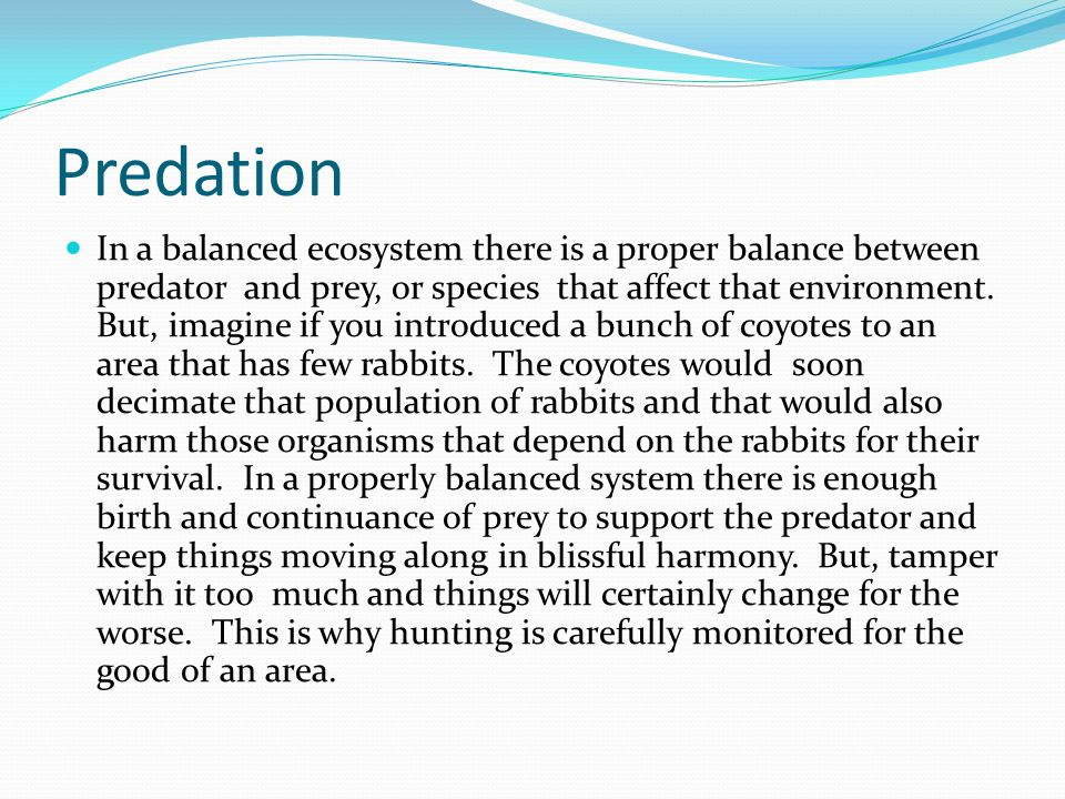 Predation In a balanced ecosystem there is a proper balance between predator and prey, or species that affect that environment. But, imagine if you in