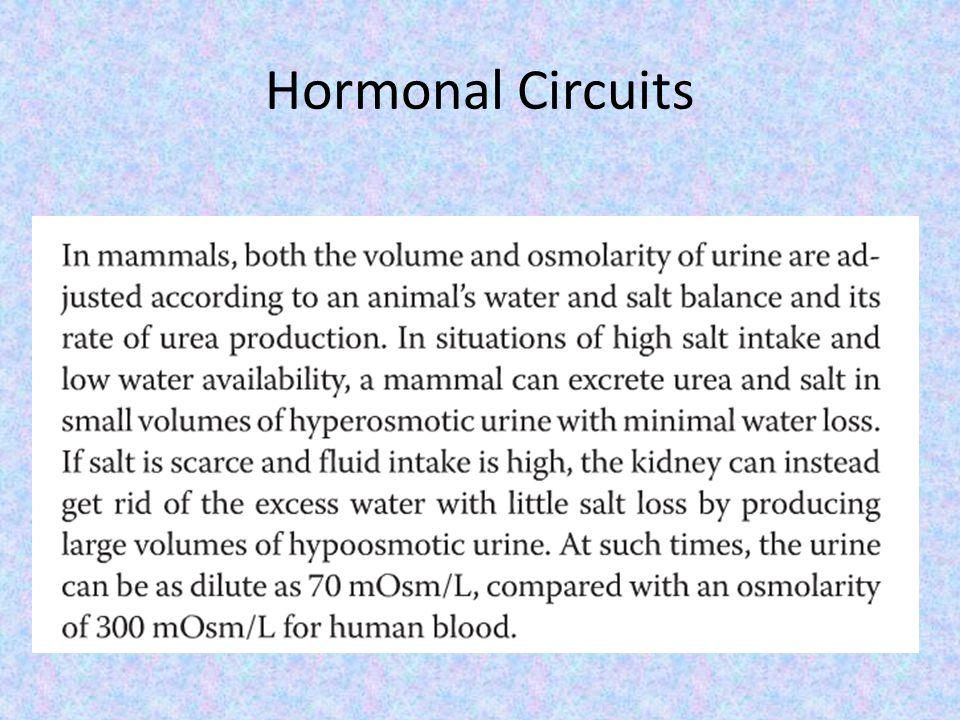 Hormonal Circuits