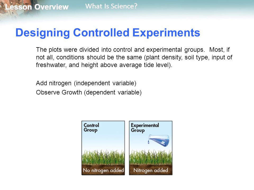 Lesson Overview Lesson Overview What Is Science? Designing Controlled Experiments The plots were divided into control and experimental groups. Most, i