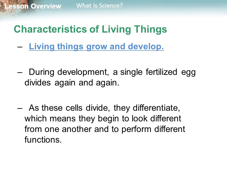 Lesson Overview Lesson Overview What Is Science? Characteristics of Living Things –Living things grow and develop. –During development, a single ferti